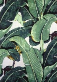 Hinson & Co. Martinique wallpaper, a.k.a., Blanche Devereaux's bedroom wallpaper.Devereaux Bedrooms, Blanche Devereaux, Martinique Wallpapers, Albinism Hull, Bedroom Wallpaper, Bedrooms Wallpapers, Golden Girls, Amanda Albinism, Classic Wallpapers