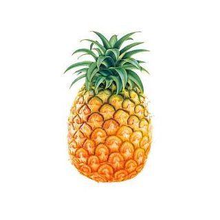 Cerca per sintomo o parte interessata al disturbo :: Ananas polvere (Ananas sativus Schult. F. + var.) - Erboristeria Sauro - vendita online erbe officinali e preparati fitoterapici.Rimedi salutistici - Laboratorio d'Erbe Sauro - promozioni - sconti