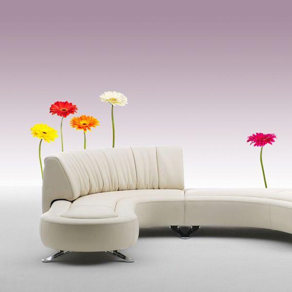 Основная комната. Яркий акцент. От плинтуса и от поверхности столов. Наклейки на стены цветы Герберы разноцветные в интернет-магазине Декоретто.