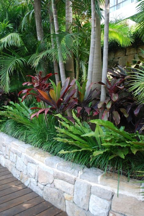 Tropical garden - Mosman - hardwood deck, sandstone wall and tropical plantings.