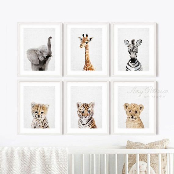 Safari Baby Animal Prints For Nursery Decor Baby Animal Nursery Wall Art Jungle Nursery Decor Sh Safari Nursery Decor Baby Animal Prints Baby Animal Nursery