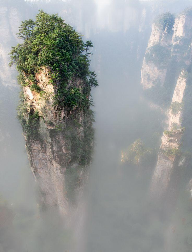 nunavut forests