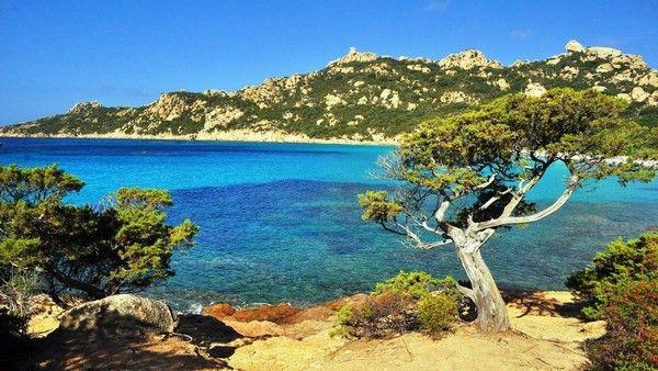 Corsica - Corse - Sartenais Valinco Taravo - Roccapina