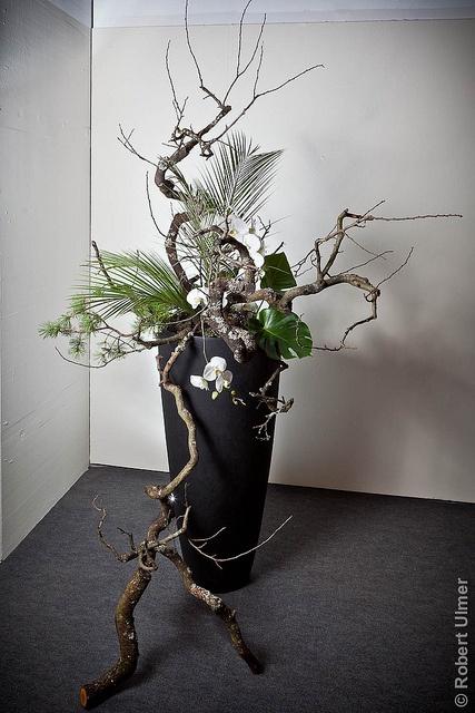 Ikebana #3 by Robert U, via Flickr