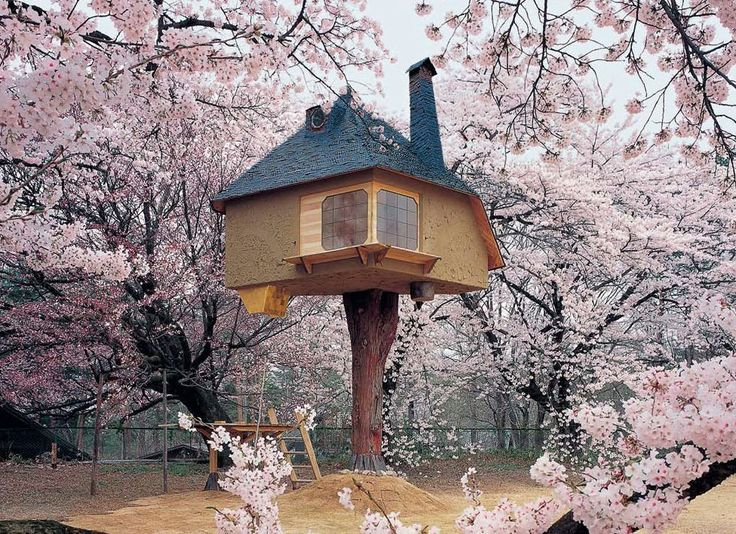 Terunobu Fujimori's Tetsu Teahouse is perched in the garden of the Kiyoharu Shirakaba Museum in Yamanashi Prefecture in Japan and offers cherry blossom admirers an incomparable bird's-eye view. Photo by Akihisa Masuda     How about a tea party instead? =)