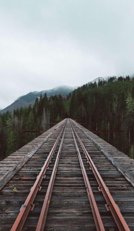 Vance Creek Bridge: How America's 2nd tallest bridge became a viral sensation