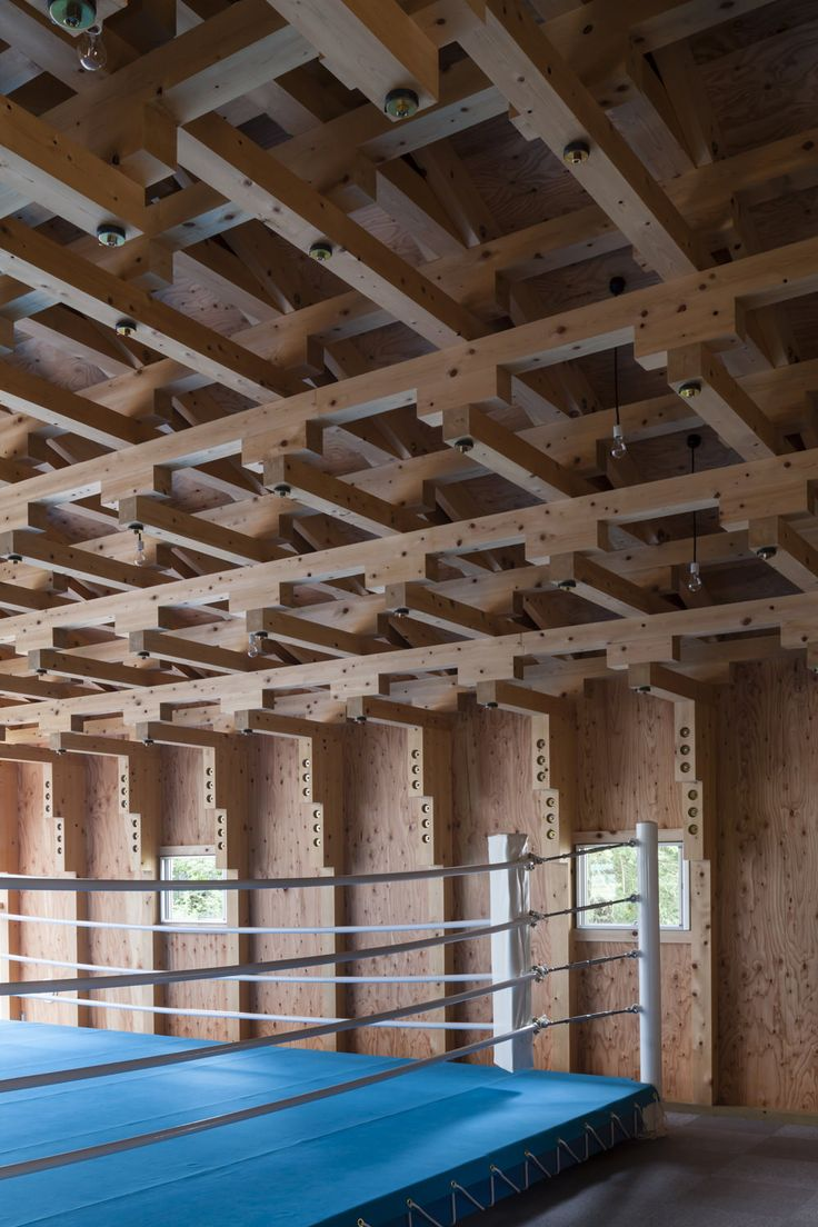 Recursive Joinery Patterns to span ceiling of boxing club