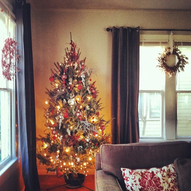 So um better late than never! Our tree is finally up! #Christmas #decorating