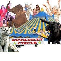 Piccadilly Circus Charlotte, NC #Kids #Events