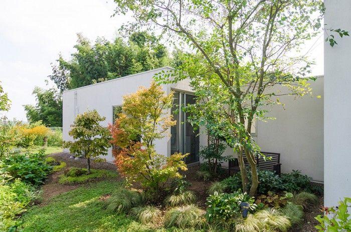 寝室と山﨑さんの部屋の間の空間につくられた庭。建物と空間にしっくりとなじんだ緑を見ているだけで心が自然に和んでくる。