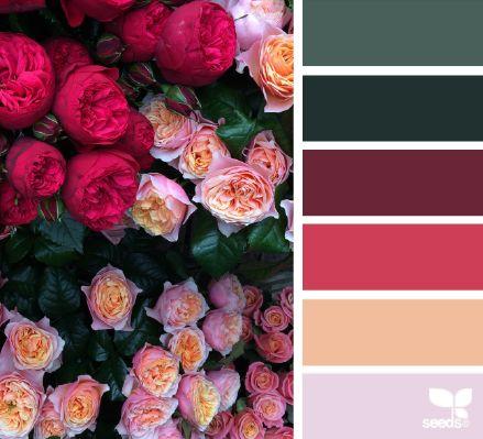 design seeds | flora palette | for all who ♥ color