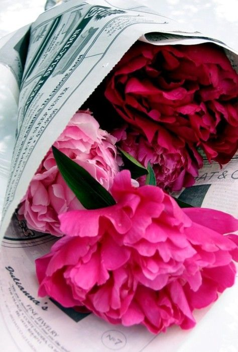 Dear Men, Flowers wrapped in brown paper, newsprint or newspaper is prettier than plastic. Love, Women | Peonies