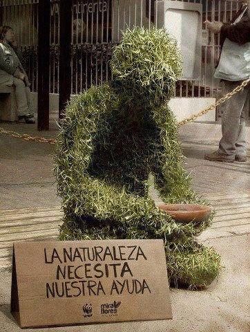 La naturaleza te necesita...