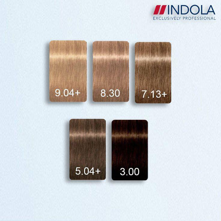 Indola Profession Permanent Caring Color Intense Coverage Plus - 5 NEW Shades.