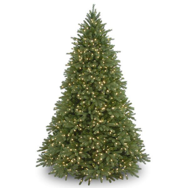 Jersey Fraser 7 6 Green Fir Artificial Christmas Tree With 1250 Multi Color Lights Pre Lit Christmas Tree Artificial Christmas Tree Fraser Fir Christmas Tree