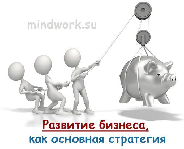 Любая коммерческая деятельность предполагает определенные стратегические цели, к которым она направлена