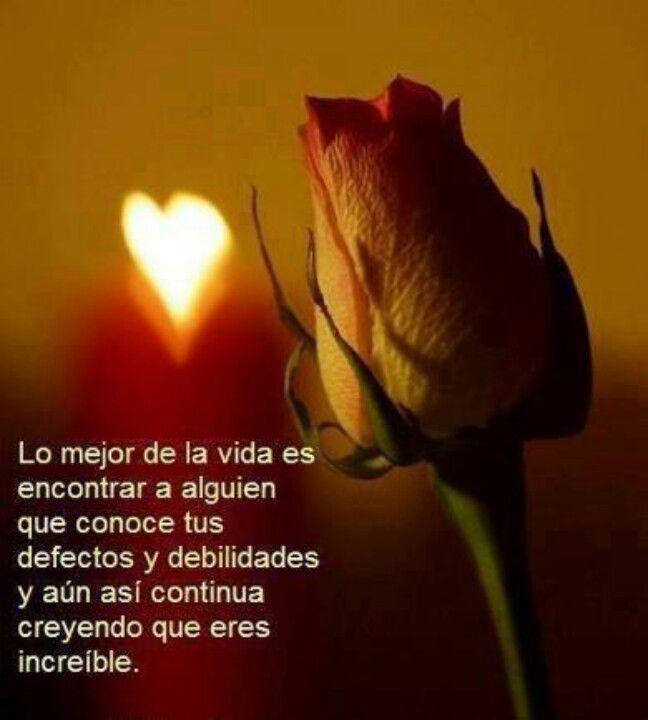 """""""Se você sabe explicar o que sente, não ama, pois o amor foge de todas as explicações possíveis"""" *Carlos Drummond de Andrade  #Amor !!!!"""