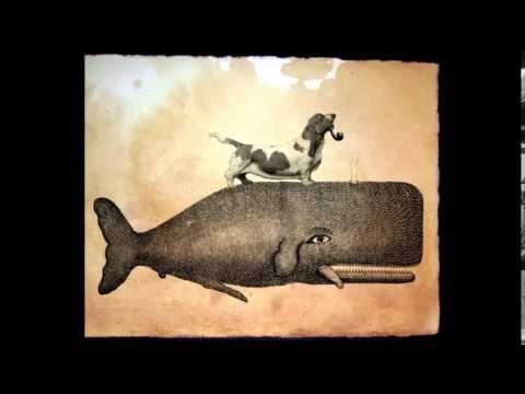 On a White Whale - Panos Fotakos / Dimitris Varouxis
