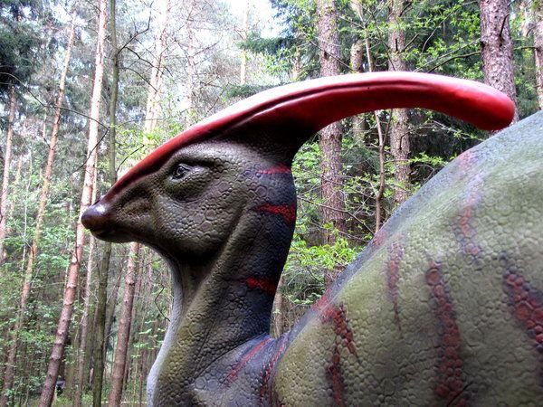 Hadrosaurier waren harmlose Pflanzenfresser. Diente der Kamm als Resonanzkörper zum Brüllen?