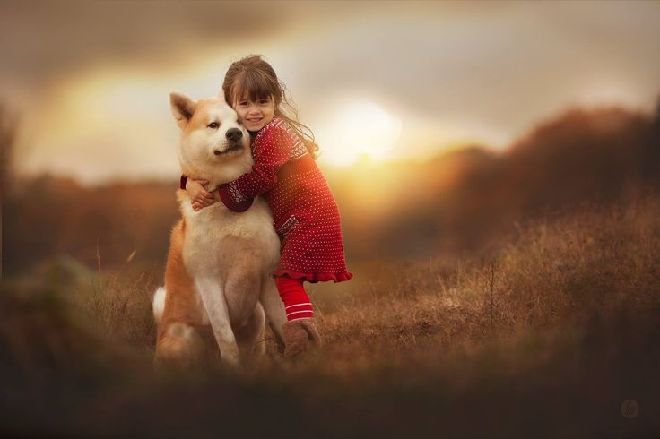 There is only one smartest dog in the world, and every little girl has it. by Hannah Meinhardt on 500px