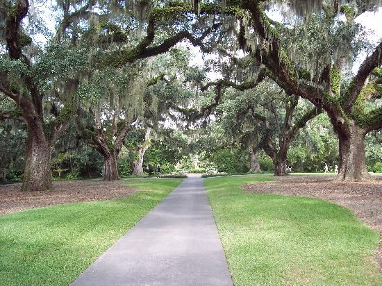 Brookgreen Gardens, Murrells Inlet, SCPlaces To Visit, Brookgreen Gardens, Favorite Places, North Myrtle Beach, Google Search, Beautiful Places, Myrtle Beach Sc, Amazing Places, Murrells Inlet