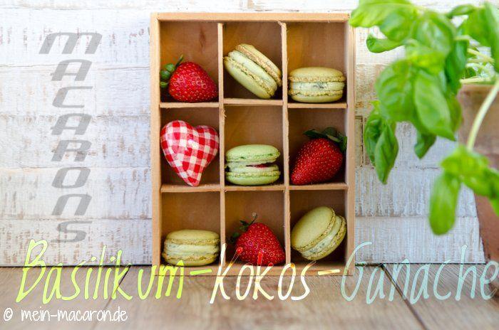 Rezept, Macarons aus Pinienkernen mit Basilikum-Kokos-Ganache.
