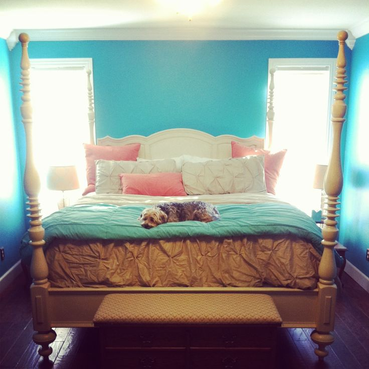 Turquoise and coral bedroom ideas color palettes for Bedroom ideas turquoise