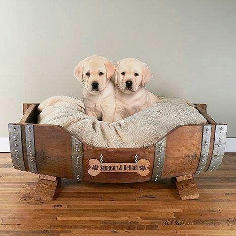 Very cozy