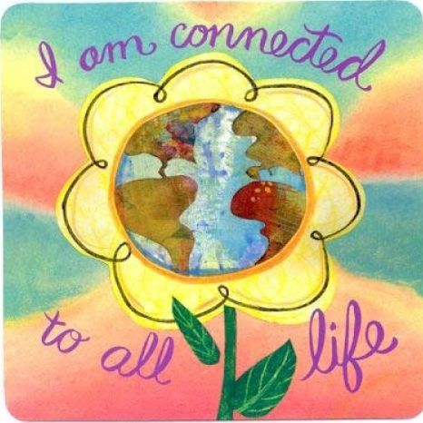 Wisdom Cards - Affirmations - Louise Hay