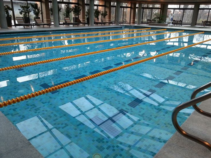 10 Best Swim Chicago Southland Pools Images On Pinterest Chicago Pools And Swimming Pools
