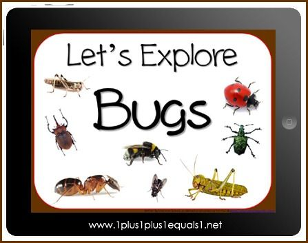 Let's Explore Bugs eBook from 1+1+1=1 - free to blog subscribers through June 15, 2012: Explore Insects Bugs, Insects Bugs Ebook Subscriber, Kids Insects Bugs, Bug Unit, Bug Insect Theme, Bug Theme, Bugs Finds, Insects Theme, Bugs Insects