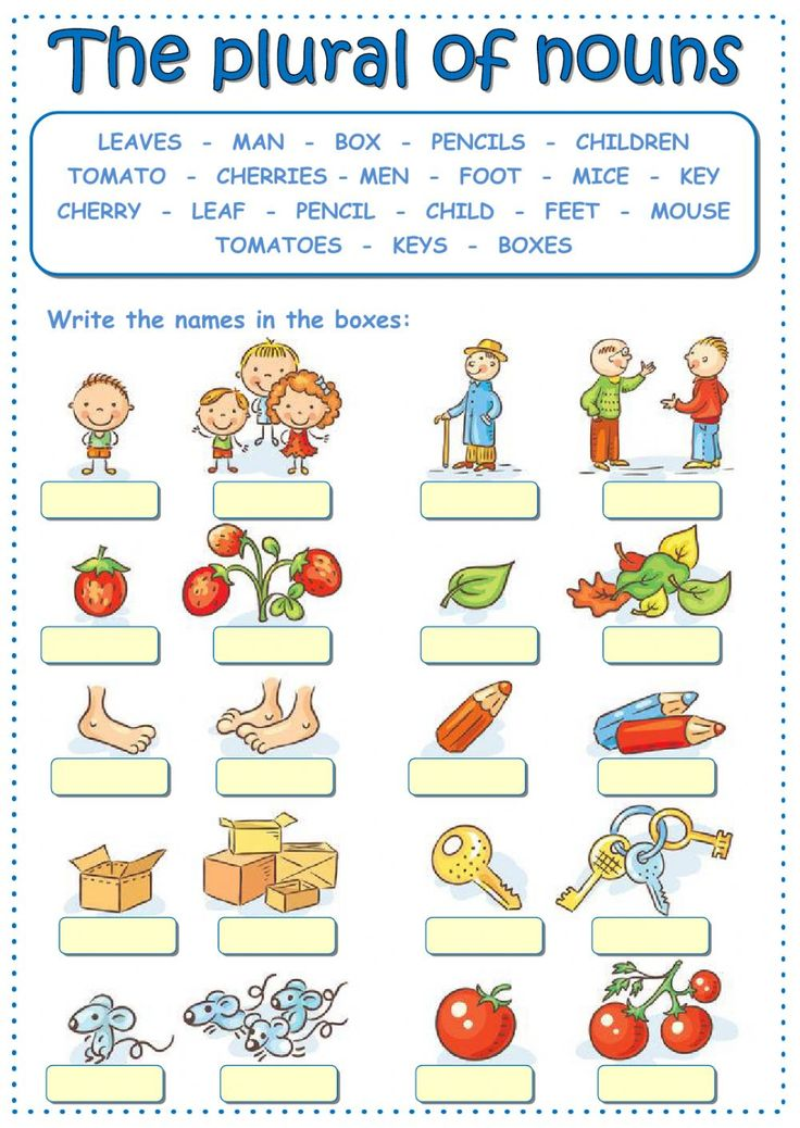 The plural of nouns interactive and downloadable worksheet