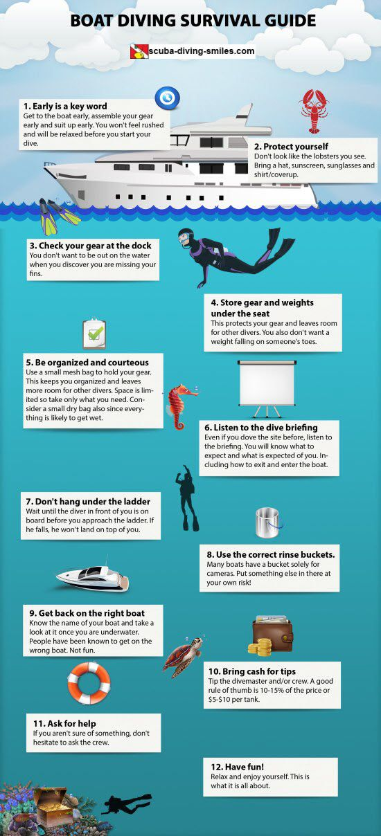 Tips for A Successful Boat Dive