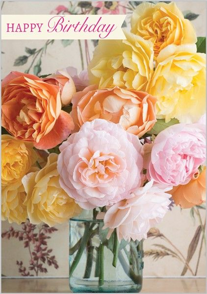 Card Ranges » 5141 » David Austin Roses - Abacus Cards - Greetings Cards, Gift Wrap & Stationery
