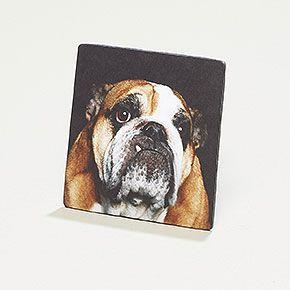 Notizmagnet Hund - Magnetkarte mit Notizblock und Bleistift auf der Rückseite