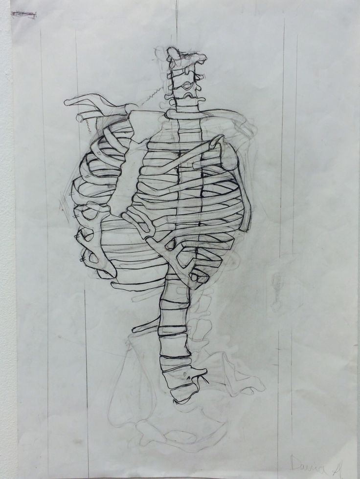 Through working in this way I have learnt  how to observe the skeleton by doing many skeleton drawing in which improved this skeleton drawing. In this piece I used soft and hard lines and did a lot of experiments on the same paper with the pencil by doing that I discover the form of the skeleton easier and made the skeleton look real and 3D.