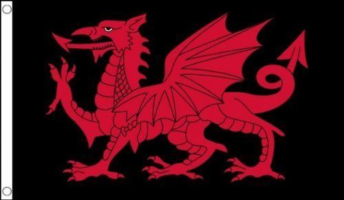 Custom Wales Welsh Dragon St Davids Black  Red Wall Flag Ideal For Club Party Decoration 3x5 Ft IndoorOutdoor >>> Continue to the product at the image link.