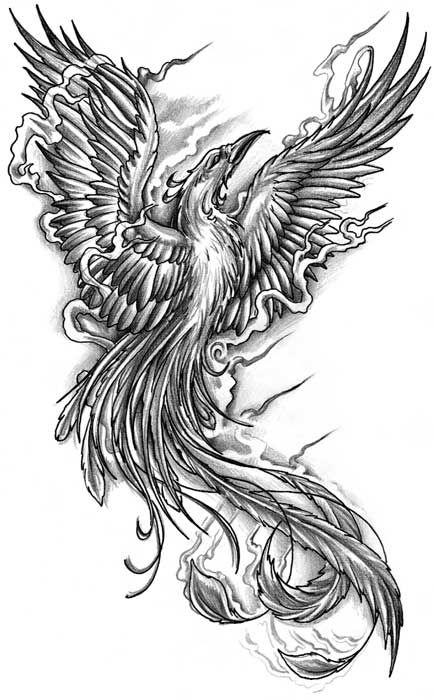 fenice tattoo bianco e nero