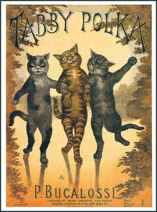 The Tabby Polka, sheet music cover by Louis Wain, ca.1880s