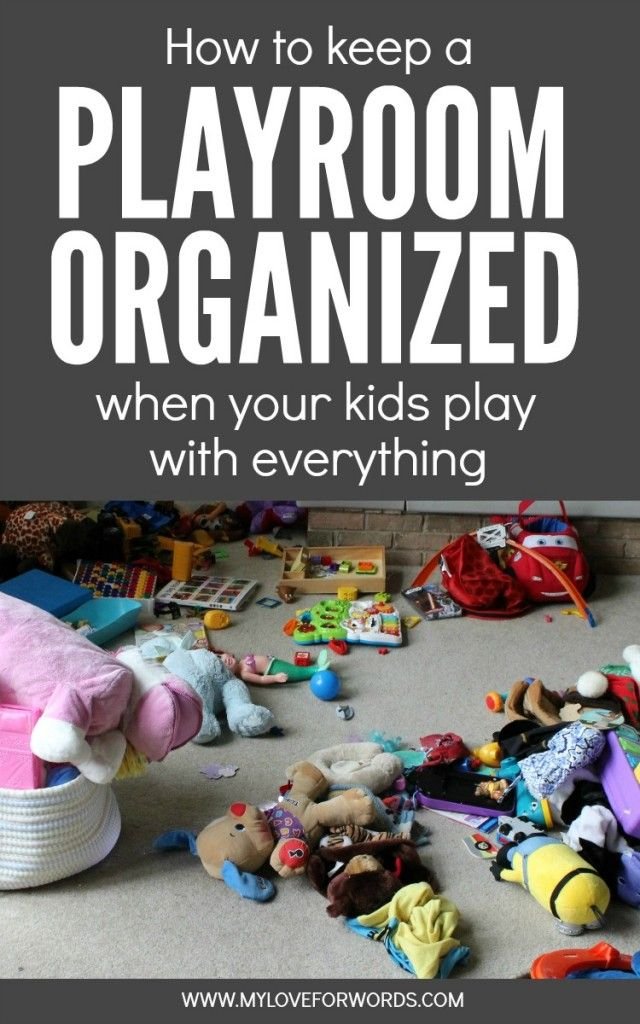How To Keep Bad Luck Into Distance With These Two Plants: How To Keep A Playroom Organized When Your Kids Play With
