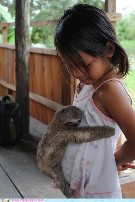 slow hug!Awww, Little Girls, Sloths Hug, Pets, Baby Sloths, Babysloths, Baby Animal, Adorable, Things