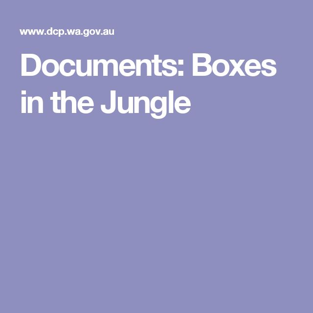 DOCUMENT: Boxes in the Jungle - A review of inner city homeless services in Perth and Fremantle (2012)