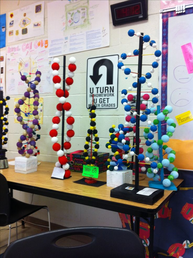 More DNA projects