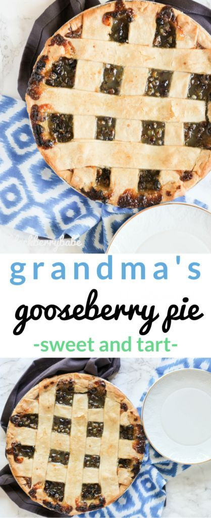 THE ONLY gooseberry pie recipe you'll ever need! Use fresh or frozen gooseberries to make this sweet and tart pie!