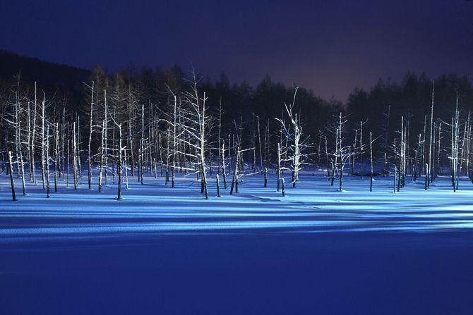 冬の夜限定!美瑛「青い池」「白ひげの滝」のライトアップが幻想的すぎる【北海道】