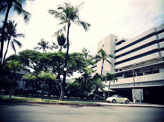 Honolulu International Airport View