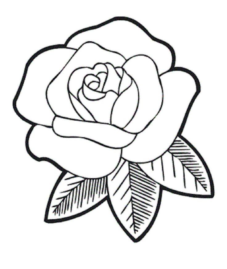10 best Flower Outlines images on Pinterest | Flower ...