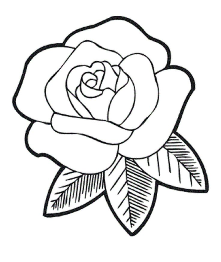 printable rose flower coloring pages - the very fragrant flower coloring for 837 992