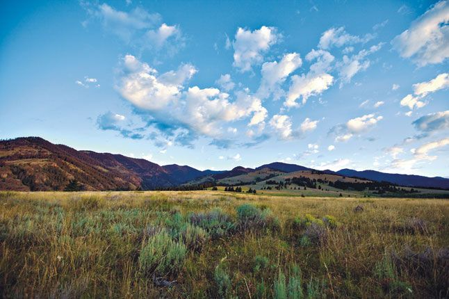 Montana: Home on the ranch