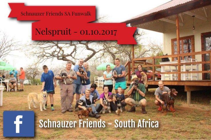 Schnauzer Friends SA Fun Walk Nelspruit 01-10-2017